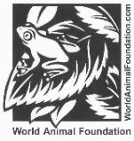 RugGuy Galleriez Supports the World Animal Foundation